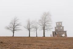 Jesieni drzewa w mgle Obrazy Royalty Free