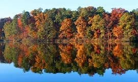 Jesieni drzewa w Pólnocna Karolina Zdjęcia Stock