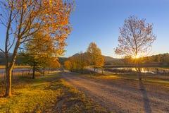 Jesieni drzewa wschód słońca Zdjęcia Royalty Free