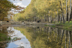 Jesieni drzewa z barwionym ulistnienia dorośnięciem w parku wzdłuż Obrazy Royalty Free