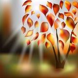Jesieni drzewa z kolorem żółtym, złoto liście Słońce promienie, świecenie Surrealistyczny kreskówka obrazka jesieni krajobraz ilustracji
