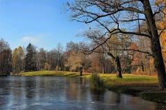 Jesieni drzewa zbliżają jezioro Zdjęcie Royalty Free