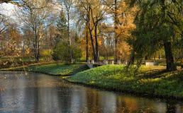 Jesieni drzewa zbliżają rzekę Fotografia Stock