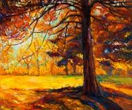 Jesieni drzewo Zdjęcia Stock