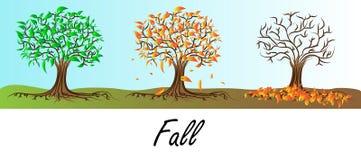 Jesieni drzewo - liścia spadek Royalty Ilustracja