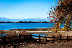 Jesieni drzewo obok jeziora Zdjęcie Stock
