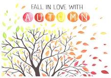 Jesieni drzewo z spada puszków liśćmi Obraz Royalty Free