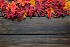 Jesieni dziękczynienia rama z, tło i obrazy stock