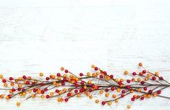 Jesieni dziękczynienia tło Fotografia Royalty Free