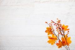 Jesieni dziękczynienia tło Obraz Stock