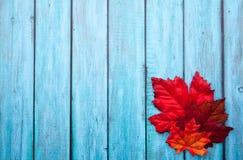 Jesieni dziękczynienia tło Zdjęcie Stock