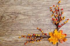 Jesieni dziękczynienia tło Zdjęcia Stock