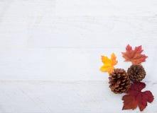 Jesieni dziękczynienia tło Fotografia Stock