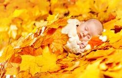 Jesieni dziecka dosypianie, Nowonarodzonego dzieciaka spadku Żółci liście, Nowonarodzeni Zdjęcia Stock