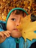 jesienią dziecko Zdjęcie Stock
