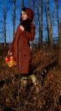 Jesieni dziewczyna Obraz Royalty Free