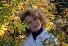 jesieni dziewczyna opuszcza trochę Zdjęcia Stock