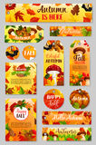 Jesieni etykietka spadku żniwa bania, pieczarka, liść Obraz Royalty Free