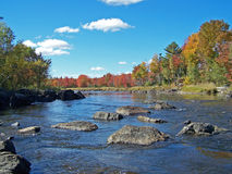 jesienią europejskiej rzeki Obraz Royalty Free