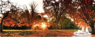 Jesieni Firey łuna obraz royalty free