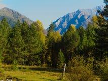Jesieni góry Obraz Royalty Free