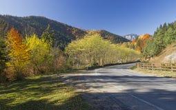 Jesieni góry droga Zdjęcie Royalty Free