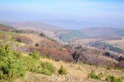 Jesieni góry i niebieskie niebo krajobraz Fotografia Stock