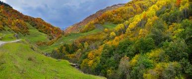 Jesieni góry w Gruzja Zdjęcia Royalty Free