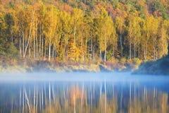 Jesieni Gauja rzeka w Sigulda Fotografia Royalty Free