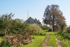 Jesieni gospodarstwa rolnego szczegół Fotografia Royalty Free