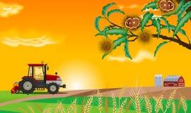 Jesieni gospodarstwo rolne ilustracja wektor