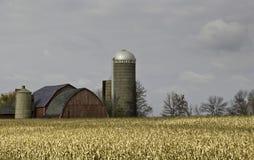Jesieni gospodarstwo rolne Zdjęcia Royalty Free