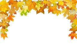Jesieni granica Zdjęcia Stock