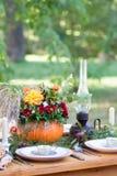 Jesieni herbaciany przyjęcie w parku zdjęcie royalty free