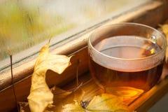 Jesieni herbata Obrazy Stock