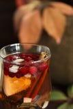 Jesieni herbata z cytryną, pikantność w szklanej filiżance makro- obraz stock