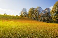 jesienią hill Zdjęcia Royalty Free