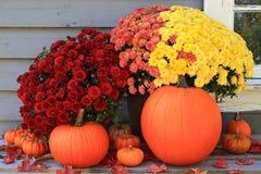 Jesieni i dziękczynienia dekoracja Zdjęcia Stock