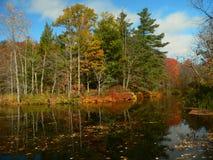 jesienią ii krajobrazu Obrazy Royalty Free