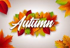 Jesieni ilustracja z Kolorowymi liśćmi i literowanie na Jasnym tle Jesienny Wektorowy projekt dla kartka z pozdrowieniami Obrazy Royalty Free