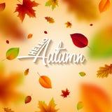 Jesieni ilustracja z Spada liśćmi i Pisać list na Jasnym tle Jesienny Wektorowy projekt dla kartka z pozdrowieniami Zdjęcie Royalty Free
