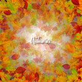 Jesieni ilustracja z Spada liśćmi i Pisać list na Jasnym tle Jesienny Wektorowy projekt dla kartka z pozdrowieniami Obraz Royalty Free