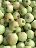 Jesieni jabłka obrazy stock