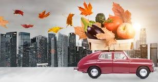 Jesieni jedzenia dostawa Obraz Stock