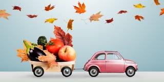 Jesieni jedzenia dostawa Obraz Royalty Free