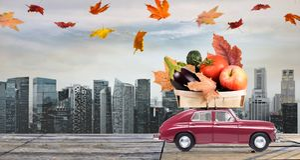 Jesieni jedzenia dostawa Zdjęcie Royalty Free