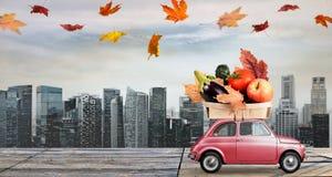 Jesieni jedzenia dostawa Fotografia Stock