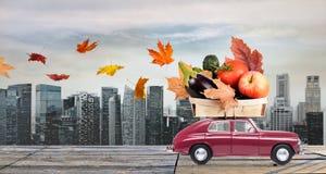 Jesieni jedzenia dostawa Obrazy Stock