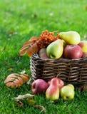 Jesieni jedzenie obraz royalty free