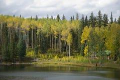jesienią jeziora Zdjęcie Royalty Free